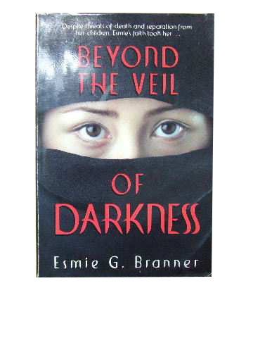 Image for Beyond the veil of Darkness.