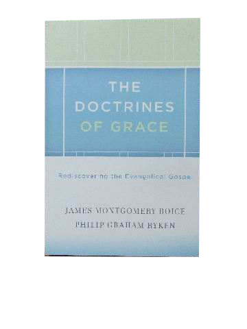 Image for The Doctrines of Grace: Rediscovering the Evangelical Gospel.