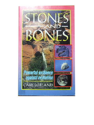 Image for Stones and Bones.