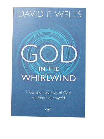 Image for God In The Whirlwind  How the holy-love of God reorients our world