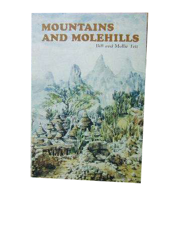 Image for Mountains and Molehills.