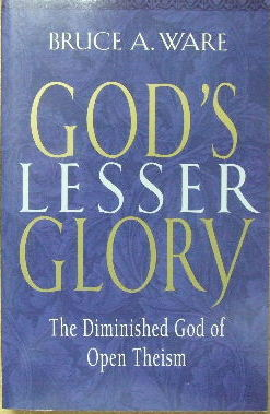 Image for God's Lesser Glory  The diminished God of Open Theism