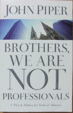 Image for Brothers, We are not Professionals.