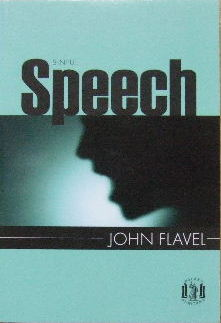Image for Sinful Speech  (Pocket Puritans series)