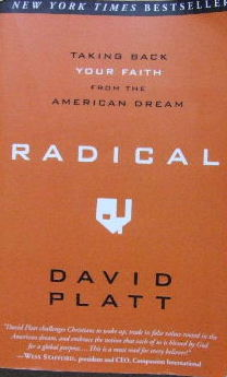 Image for Radical - taking back your faith from the American dream.