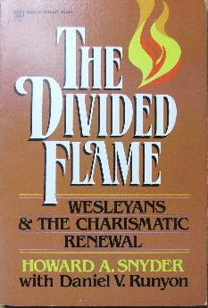 Image for The Divided Flame  Wesleyans and the Charismatic Renewal