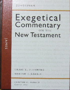 Image for James  (Exegetical Commentary on  the New Testament series)