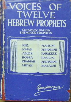 Image for Voices of Twelve Hebrew Prophets.