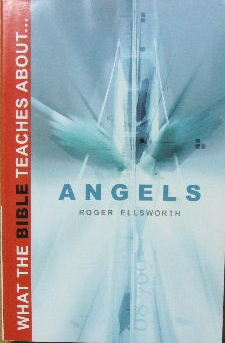 Image for What the Bible teaches about Angels.