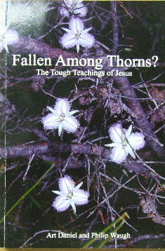 Image for Fallen among thorns  The tough techings of Jesus