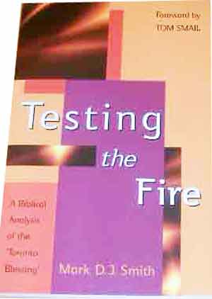 Image for Testing The Fire  A Biblical Analysis of the Toronto Blessing