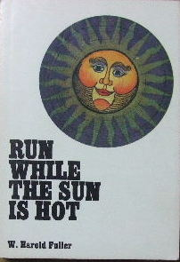 Image for Run While the Sun Is Hot.