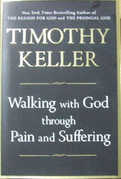 Image for Walking with God through Pain and Suffering.