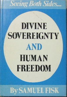 Image for Divine Sovereignty and Human Freedom.