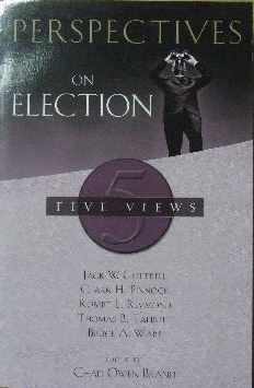 Image for Perspectives on Election: Five Views.