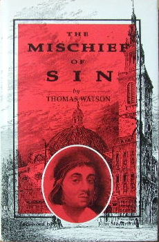 Image for The Mischief of Sin.