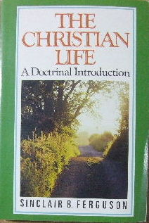 Image for The Christian Life  A Doctrinal Introduction