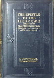 Image for The Epistle to the Hebrews  (Devotional Commentary)
