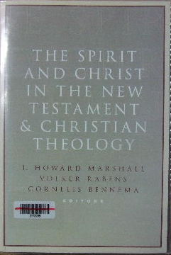 Image for The Spirit and Christ in the New Testament and Christian Theology.