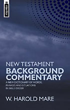Image for New Testament Background Commentary: A New Dictionary of Words, Phrases and Situations in Bible Order.