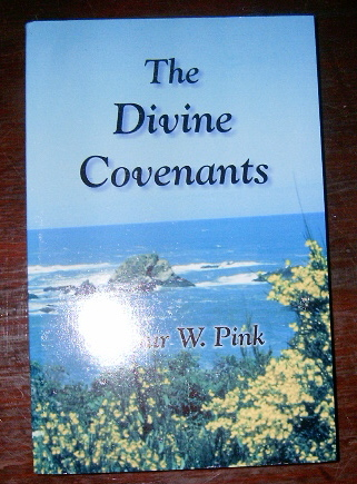 Image for The Divine Covenants.