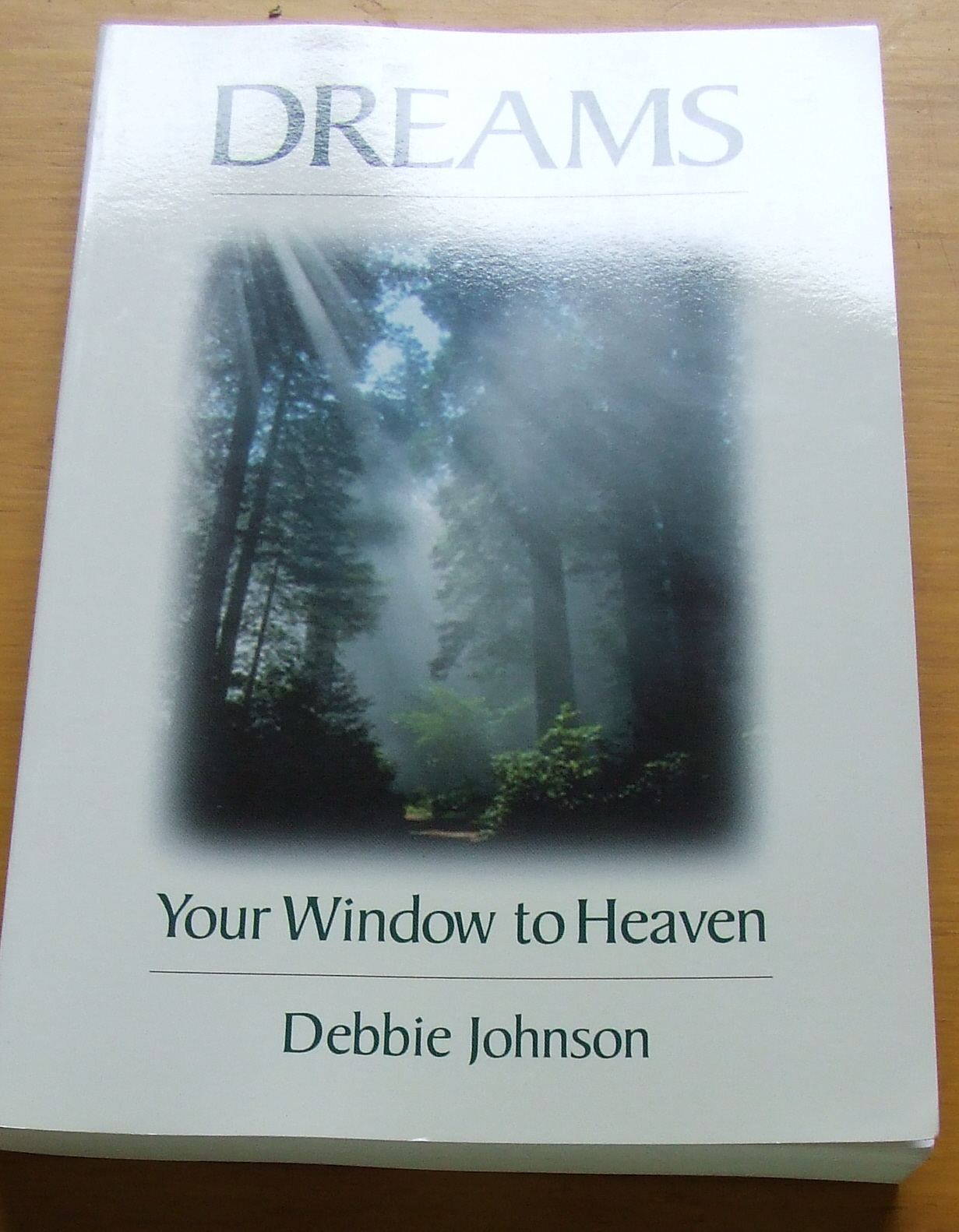 Image for Dreams: Your Window to Heaven.