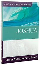 Image for Joshua (Expositional Commentary).