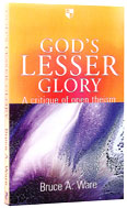 Image for God's Lesser Glory  A Critique of Open Theism