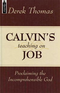 Image for Calvin's Teaching on Job.