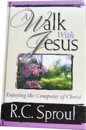 Image for A Walk with Jesus  Enjoying the Company of Christ