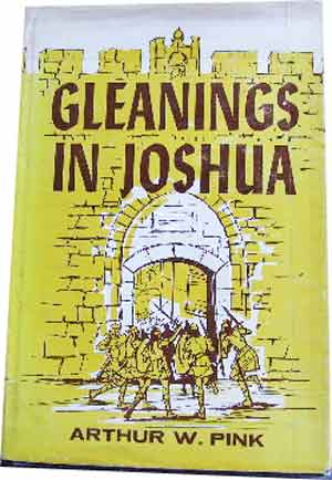 Image for Gleanings in Joshua.