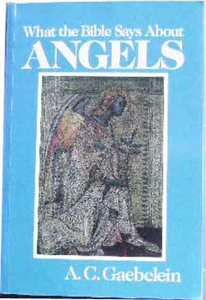 Image for What the Bible Says About Angels.