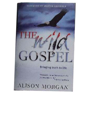 Image for The Wild Gospel  Bringing Truth to Life