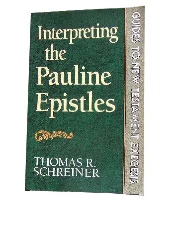 Image for Interpreting the Pauline Epistles  Guides to New Testament Exegesis