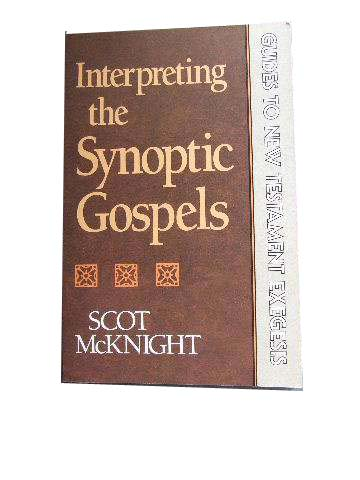 Image for Interpreting the Synoptic Gospels  Guides to New Testament Exegesis