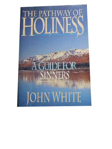 Image for The Pathway of Holiness: A Guide for Sinners.