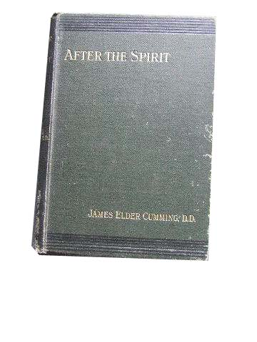 "Image for ""After the Spirit""  Being Further Papers on The Eternal Spirit, His Person and Work"