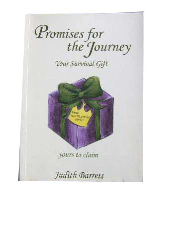 Image for Promises for the Journey  Your Survival Gift
