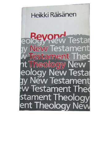 Image for Beyond New Testament Theology  A story and a programme