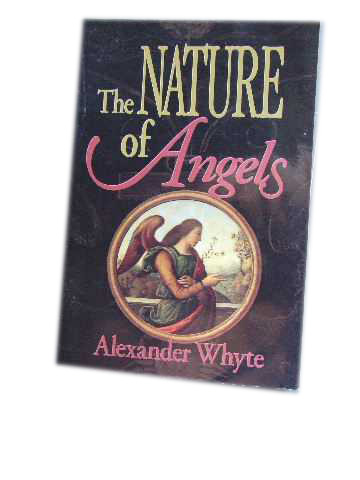 Image for The Nature of Angels.