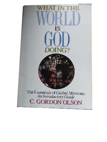 Image for What in the World is God Doing?  The Essentials of Global Missions: An Introductory Guide