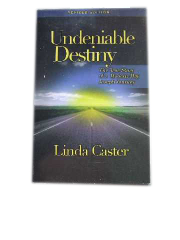 Image for Undeniable Destiny  The True Story of a Modern-Day Joseph Journey