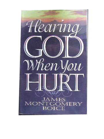 Image for Hearing God When You Hurt.