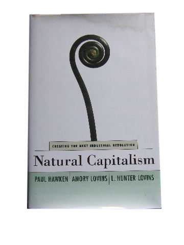 Image for Natural Capitalism  Creating the Next Industrial Revolution