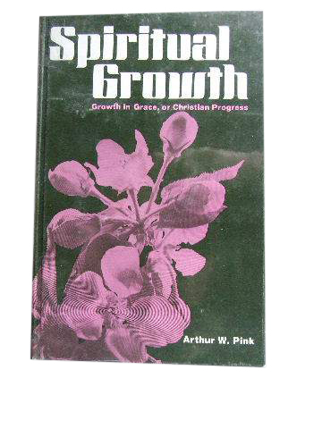 Image for Spiritual Growth  Growth in Grace or Christian Progress